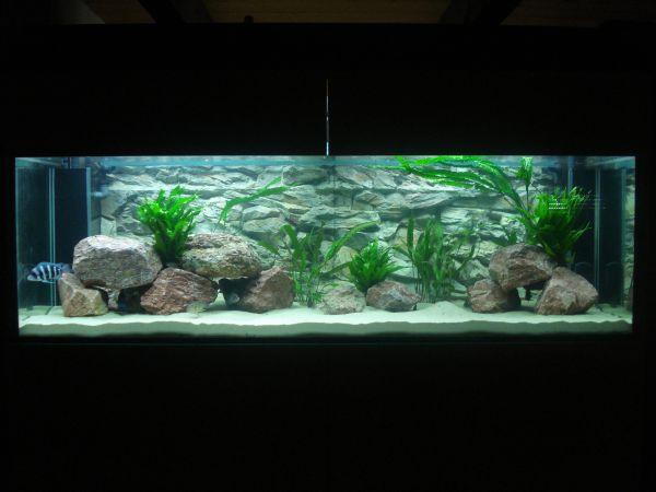 Gibberosas 1260l Aquarium